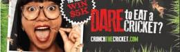 Promotion of the Month - Salsa dares customers to eat crickets, sells 21,000 pieces