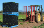 A sustainability journey that starts at the farm